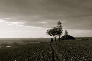 Comment (vraiment) sauver l'agriculture française avec 3milliards | Ecologie - Humanisme - Solidarités | Scoop.it