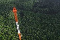 Brazil constructs climate tower in heart of Amazon to monitor climate change | GarryRogers NatCon News | Scoop.it