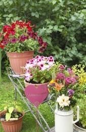 Giardino e ortoterapia: coltivare la terra dona felicità - Non Sprecare | Coltivare l'orto | Scoop.it