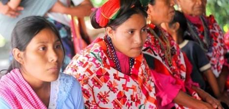 El papel de los pueblos indígenas dentro del Nuevo Sistema de Justicia Penal | JuiciosOrales.MX | Sonora | Scoop.it