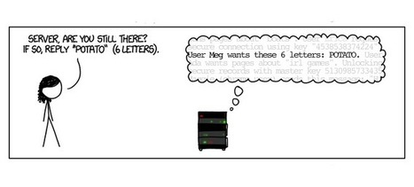 This Cartoon Is the Simplest Explanation of Heartbleed Yet | Linguagem Virtual | Scoop.it