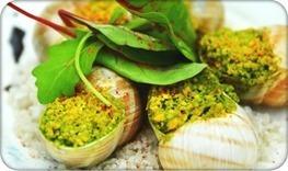 L'escargot•Cuisine-escargot: le site des escargotiers, pour tout savoir sur l'escargot | News de la cuisine........ | Scoop.it