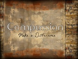 CREATING A CULTURE OF COMPASSION | Social Neuroscience Advances | Scoop.it