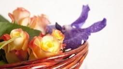 Art Home Naturel' | Art Home Naturel' est une entreprise de création florale. Je crée des compositions artistiques et des bouquets de fleurs pour toutes les occasions. J'anime aussi des ateliers de... | Le jardin créatif | Scoop.it