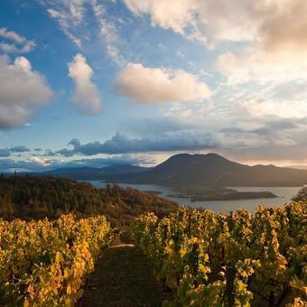 5 up-and-coming California wine regions on our radar | Pinot Post | Scoop.it