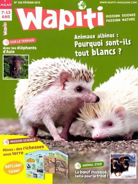 Wapiti n°335 | Revue de Presse ! | Scoop.it