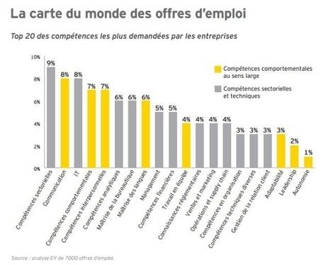 Bienvenue dans l'ère du salarié caméléon - Mode(s) d'emploi | Emploi et formation alternance Rennes | Scoop.it
