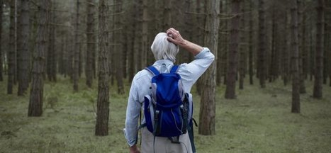 How Getting Lost Can Help You Find Your Next Big Idea | Small Business On The Web | Scoop.it