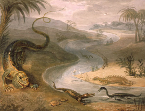 Strange 19th Century Drawings of Dinosaurs and Other Extinct Animals | Strange days indeed... | Scoop.it