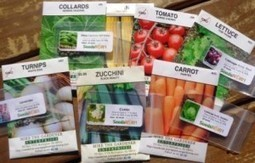 Gardening Jones Newbies, Preppers & Seed Savers » Gardening Jones | Gardening | Scoop.it