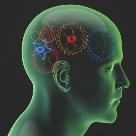 Neuromarketing ist in aller Munde & auch im Onlinebereich sinnvoll | Online Marketing News | Digital | Scoop.it