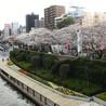 Tokyo Japan Lifestyle, Food & Drinks!