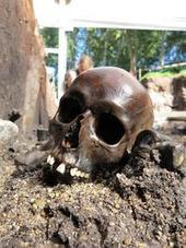 Bones from time of Christ reveal a brutal history - Bluefield Daily Telegraph | Histoire et Archéologie | Scoop.it