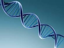 """Why Scientists Will Never Find """"The Gene"""" For Academic Success 