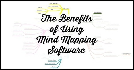 The Benefits of Using Mind Mapping Software - Professional Content Creation   Technology news   Scoop.it