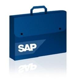 Aplicaciones de SAP para IPAD | tecnologia | Scoop.it
