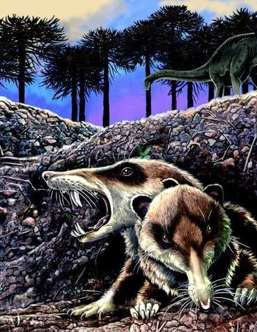 "Ancient ""Saber-Toothed Squirrel"" Found 