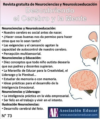 Neurociencias y Educación - Asociación Educar - Material gratuito, cursos a distancia, libros, talleres y formaciones en Neurociencias, Neuroeducación, Neurobiología, Neuromanagement, Neurofisiolog... | Neurociencias | Scoop.it