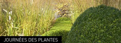 L'Observatoire des Tendances du Jardin | Domaine de Courson | Tendances : déco et habitat | Scoop.it