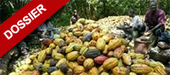Le directeur général du conseil du café-cacao, marraine de la fête ... - Abidjan.net   FILIERE CAFE CACAO EN COTE D'IVOIRE   Scoop.it