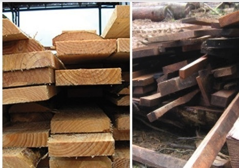 China overtook Canada and USA in wood production in 2014 | Timberland Investment | Scoop.it