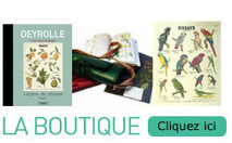 [Deyrolle - Taxidermie, entomologie, curiosités naturelles]   French Eurotrip 2014   Scoop.it