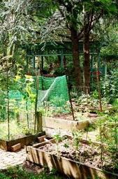 Les jardins partagés, ou comment recréer du lien social | Locavore | Manger Juste & Local | Scoop.it