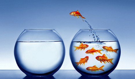 Can You Fix a Broken Business Culture? | Corporate Culture and OD | Scoop.it