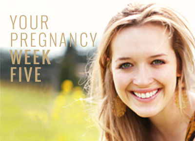 Know about 5 week pregnancy symptoms | Week by Week Pregnancy Guide | Scoop.it