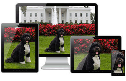 Picturefill 2.0: Responsive Images And The Perfect Polyfill | Smashing Magazine | IA-UX | Scoop.it