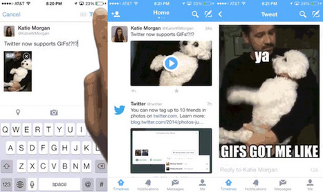 Twitter Now Lets You Post and Play Your Animated GIFs on Web, Android and iOS | xposing world of Photography & Design | Scoop.it