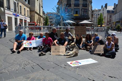 Reims: La protestation contre l'arrêté anti-mendicité ne faiblit pas   Une seule Terre pour tous - Only one Earth for all   Scoop.it