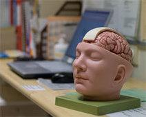 Työterveyslaitos - Tietoa muistin toiminnasta | Psykologia | Scoop.it