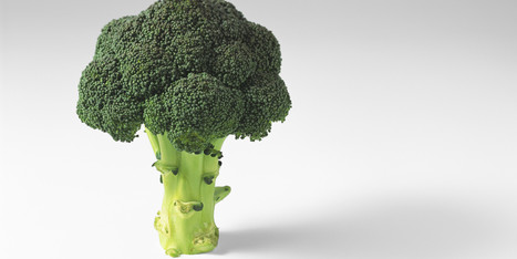 Broccoli Compound DIM Could Protect Healthy Tissues During Radiation ... - Huffington Post | Go Sugar Free Now | Scoop.it