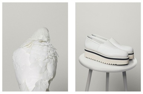 Dondup Sleepers Couture - Vogue.it   Le Marche & Fashion   Scoop.it