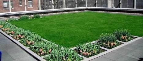 Cubiertas verdes, oasis vegetales en el corazón de la ciudad - La Razón | Jardines Verticales y azoteas verdes. | Scoop.it