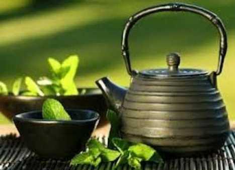 Le thé vert est bon pour la mémoire | Le Monde en Tasse | Scoop.it