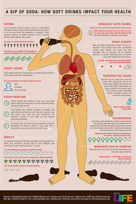 This Is Your Body On A Can Of Soda | Wellness Life | Scoop.it