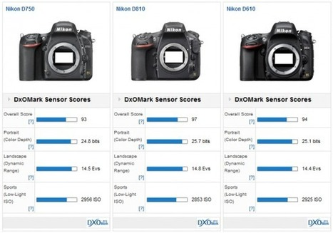 Nikon D750 reaches DxOMark top ten in sensor test | Photography | Scoop.it