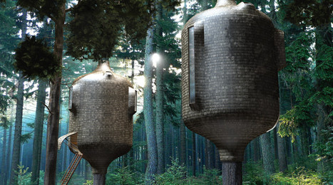 Embryo Treehouse | What Surrounds You | Scoop.it