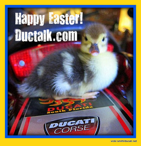 Happy Easter! | Ductalk | Scoop.it