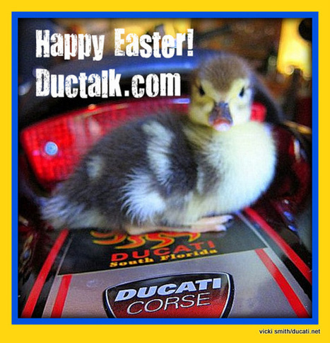 Happy Easter! | Ductalk Ducati News | Scoop.it