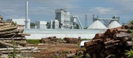 La centrale biomasse de Pierrelatte, l'absurde projet inutile d'AREVA | Areva - Les enjeux | Scoop.it