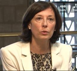 La Prévention des Risques Psychosociaux au CESE | CHSCT DEVOTEAM | Scoop.it