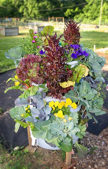 Garden Tower Project - 50 Plants in 4 Square Feet (Click for Photos) | Un potager dans la ville | Scoop.it