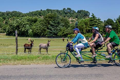 Climat : vive la vélorution ! | Revue de web de Mon Cher Vélo | Scoop.it