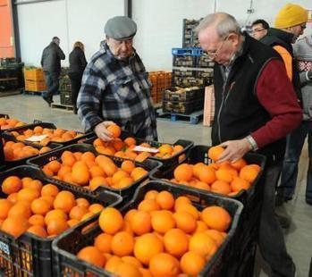 Rusia se convierte en un importador crucial para el sector hortofrutícola | Sector hortofrutícola | Scoop.it
