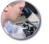 Clinical Summary | Sambucol | Flu Treatment | Scoop.it