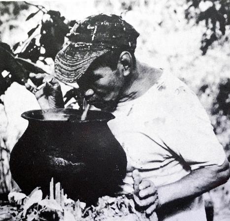 Luis Eduardo Luna - Tanítómestereik a növények   Shamans and Entheogens Hungarian   Scoop.it