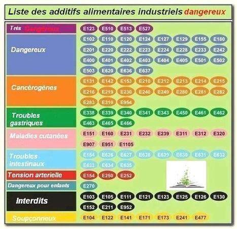 Liste des additifs alimentaires dangereux pour la santé | Papillonant... | Scoop.it